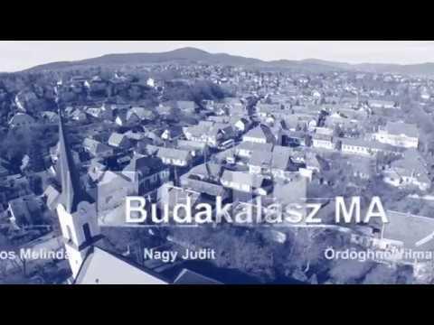 TV Budakalász / Budakalász Ma / 2017.08.29.