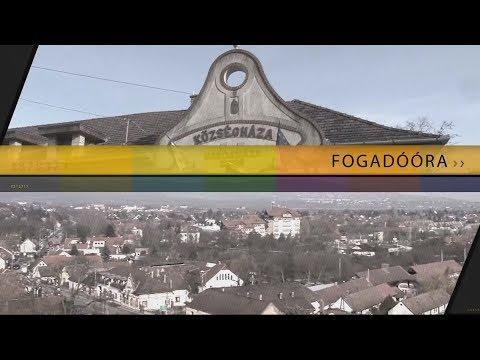 TV Budakalász / Fogadóóra / 2017.11.16.