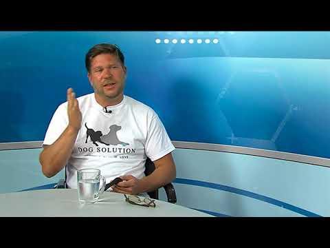 TV Budakalász / Köztér / 2017.09.14.