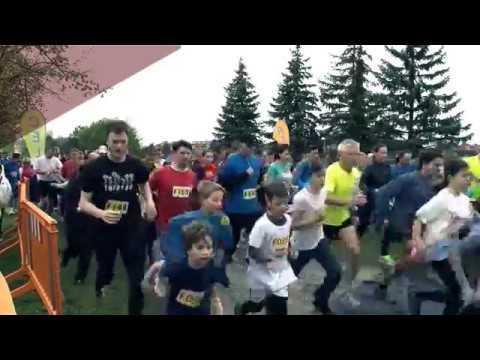 VKC Televízió / Félidő / 2017.05.02.
